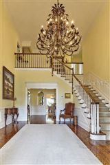 grand estate in Culbreath Isles luxury real estate