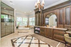 Luxury properties Stunning Davis Islands pool home