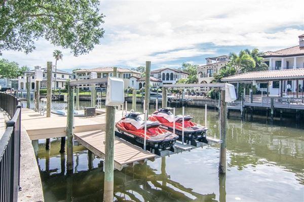 Stunning Davis Islands pool home luxury real estate