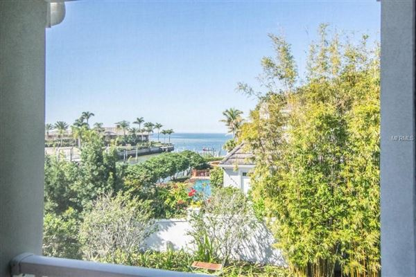 spectacular showplace in Culbreath Isles luxury homes