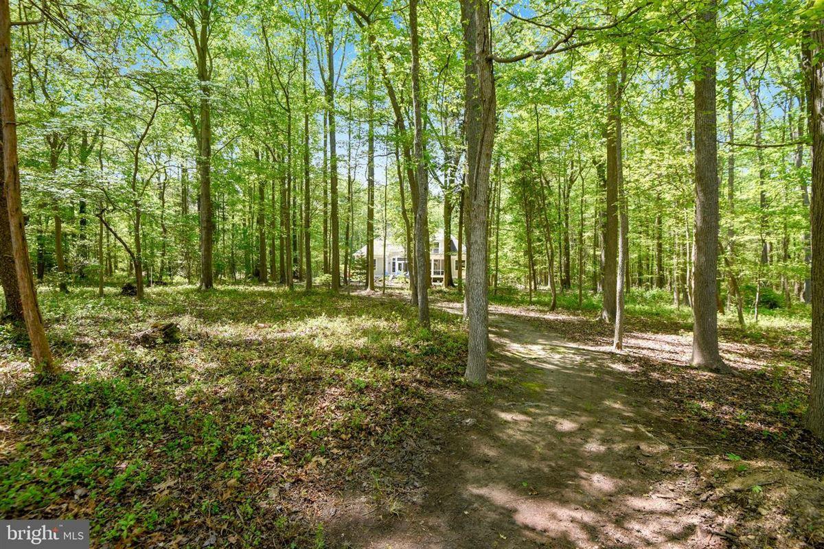Luxury properties six acres along Chesapeake Bay