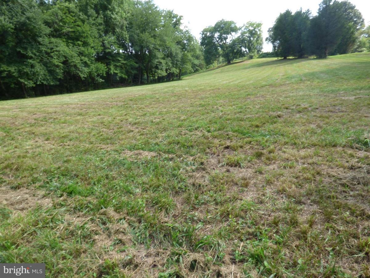 Mansions in nearly seven acres ready to build