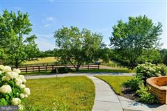 Luxury homes turnkey 11-acre equestrian estate