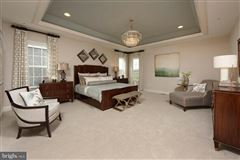 Brand new luxury home luxury homes
