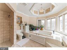 a peaceful retreat in buckingham luxury homes