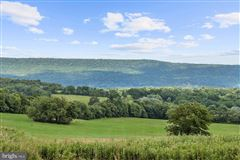 stunning property Situated perfectly on 1.6 acres luxury real estate