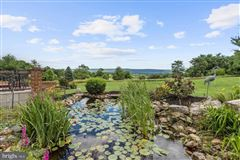 stunning property Situated perfectly on 1.6 acres mansions
