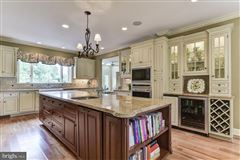 stately light-filled colonial on an exquisite two acre lot luxury properties