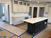 new luxury home in ambler mansions
