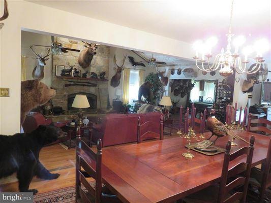 Luxury real estate Wonderful hunting property