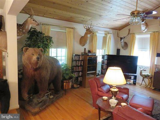 Wonderful hunting property luxury real estate
