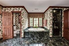 Luxury homes in Spectacularly decorated and carefully maintained colonial