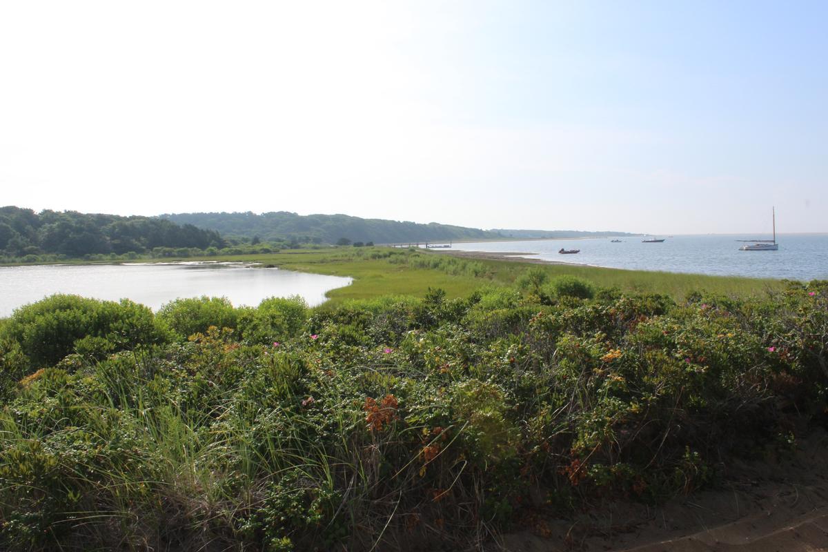 Waterfront Parcel on Katama Bay luxury properties