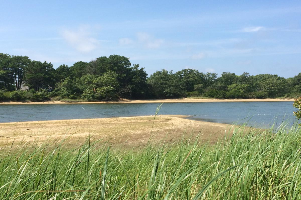 Luxury homes SUPERB PARCEL ON TISBURY GREAT POND