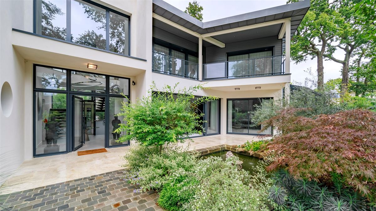 Mansions in striking modern home and garden