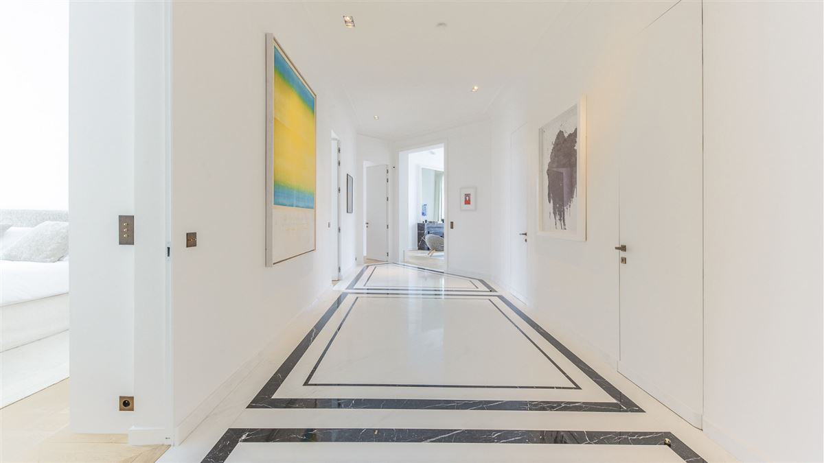Luxury homes in exceptionally renovated and immaculate apartment