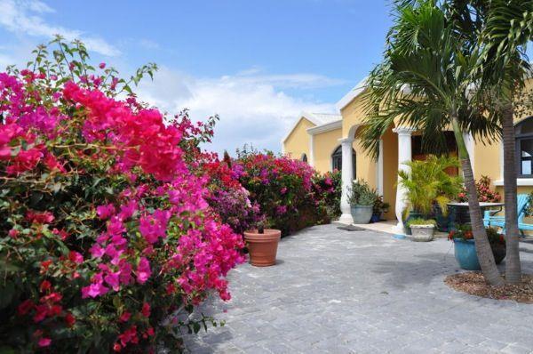 -Villa Riviera luxury homes