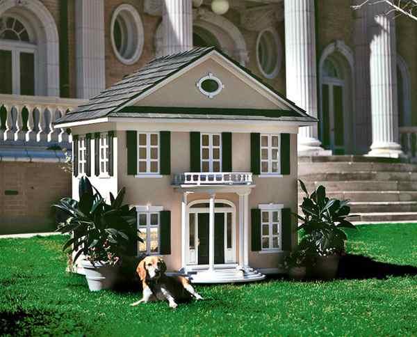 Luxury Dog Mansions